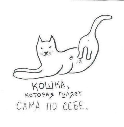 fxyNKKQKi9I.jpg