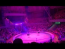цирк Слоны и Тигры 1