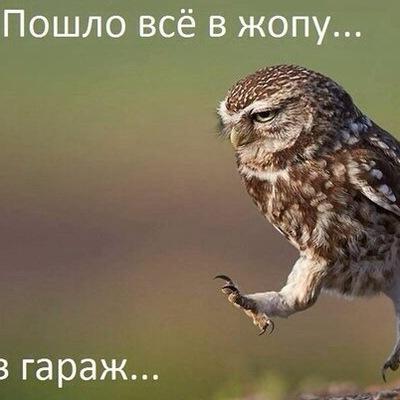 Роман Юрков, 17 сентября , Новокузнецк, id64165692