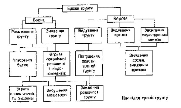 Рис. 1 Наслідки ерозії грунту.