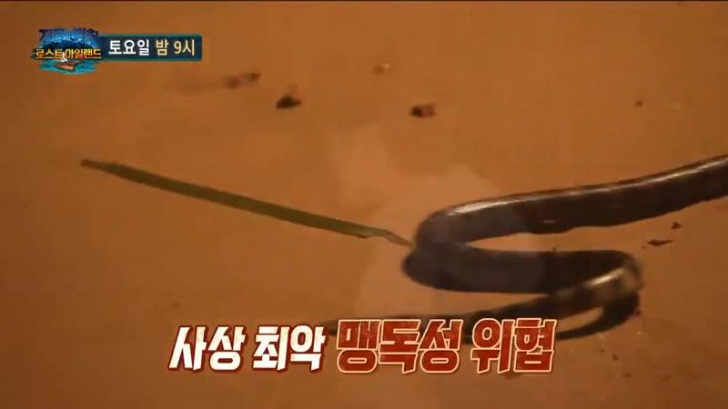 [INFO] YERIs first episode on SBS Law of the Jungle Lost Island begins next week, June 15