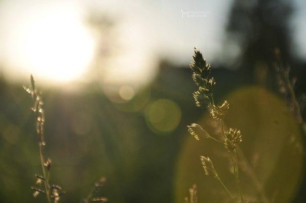 Фотогалерея | Интерколледж | фото №1