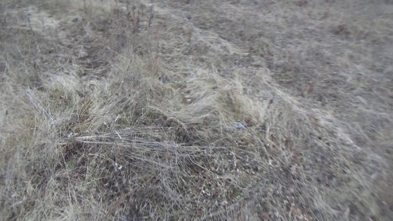 Куча мусора рядом Терновой Погореловкой Пронского райна Рязанской области