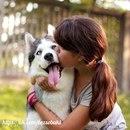 По улыбке прохожих видно, что им нравится моя собака, верно, они считают ее идеальной…
