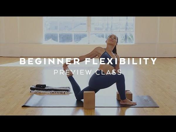 Beginner Power Vinyasa: Flexibility Preview with Briohny Smyth