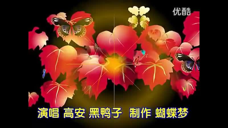 高安_黑鸭子《红尘情歌》Gao An _ black duck red love song