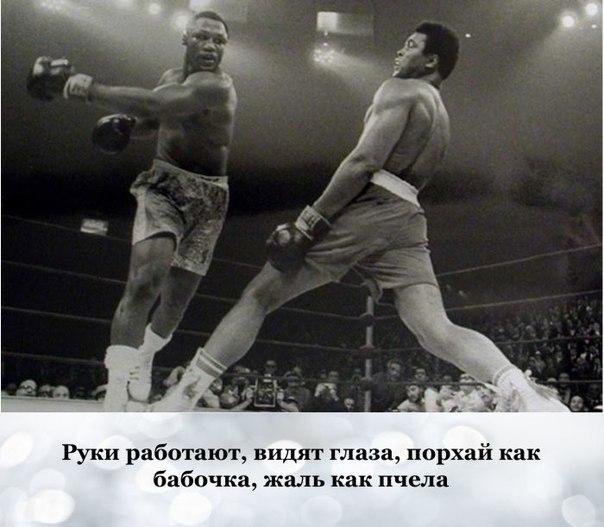 Легендарный боксер Мохаммед Али скончался на 74-м году жизни. В память о великом боксере вспомним его 10 знаменитых высказываний.