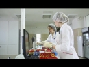 Лаборатория Гемохелп