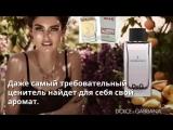 W66 DolceGabbana LImperatrice 3 Shaik Качество Стойкость Шлейф