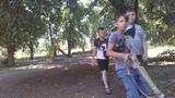 В парке на сортировке,  хуёвые хуевчане пилят деревья возле детской площадки.