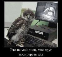 Алексей Савиных, 11 ноября 1989, Брянск, id182750704