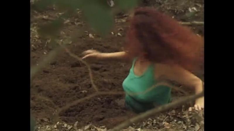 Forest Quicksand Dramas