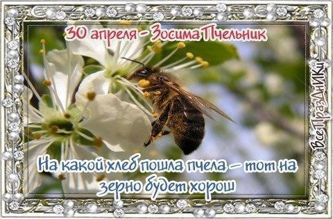https://pp.userapi.com/c846120/v846120475/3bb1a/RaTdkRv_eOk.jpg