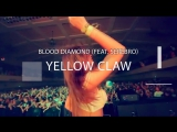 Yellow Claw (feat serebro) - Blood Diamond (amateur video)