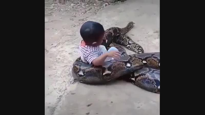 В прошлой жизни был змеёй...