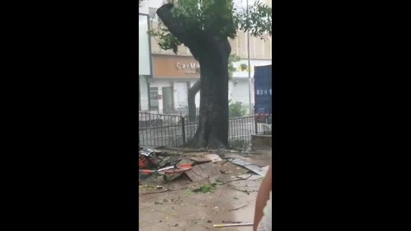 Typhoon suite, il aurait pas du garer son camion ici