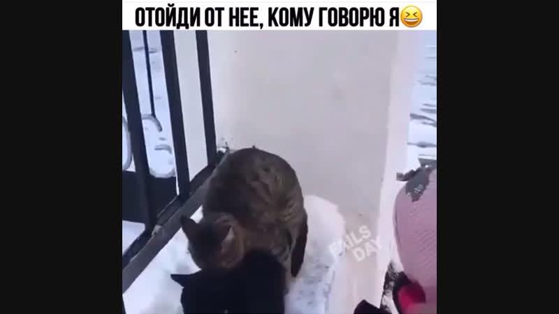 Отойди от неё
