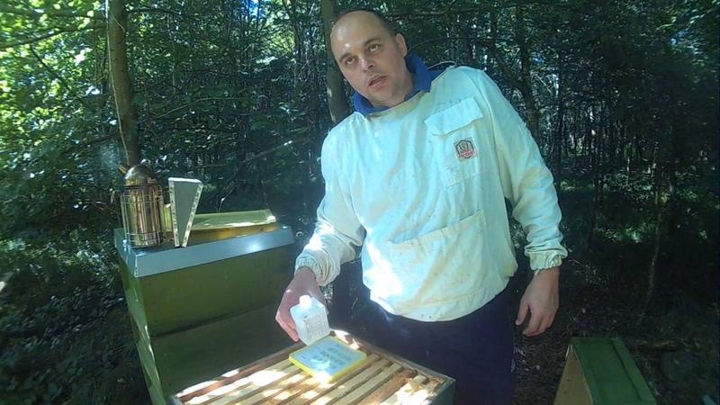 Пчеловодство видео Обработка Пчел Муравьинная Кислота (Ammeisenseure)Клещ Варроа Часть 1