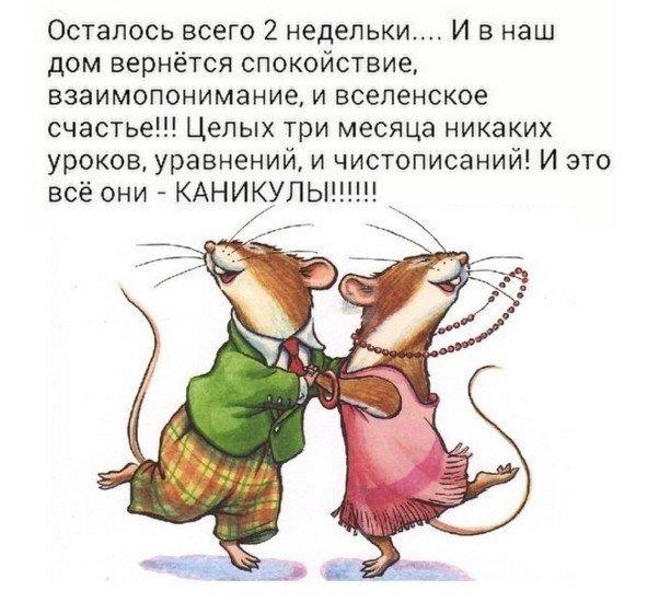 Фото №456267108 со страницы Виктории Крысовой