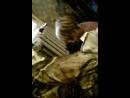 Даниил Майдуров - Live
