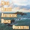 MKAD orchestra - официальная группа
