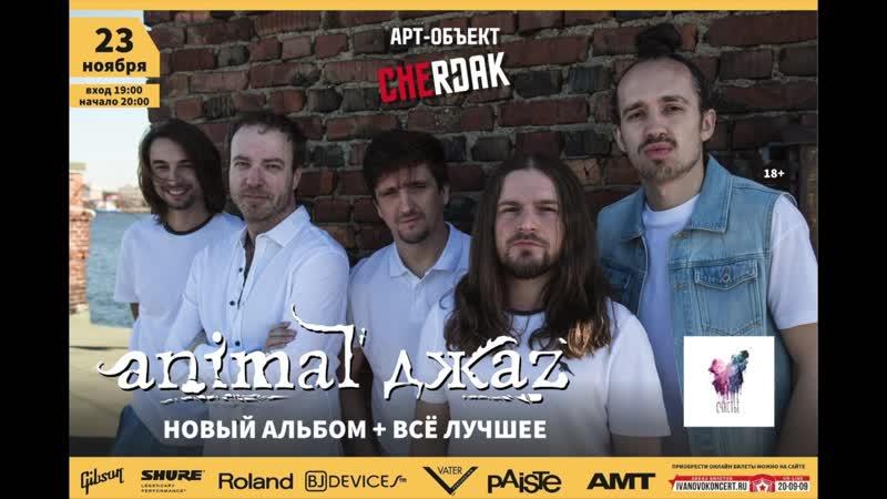 Приглашение на концерт Animal ДжаZ