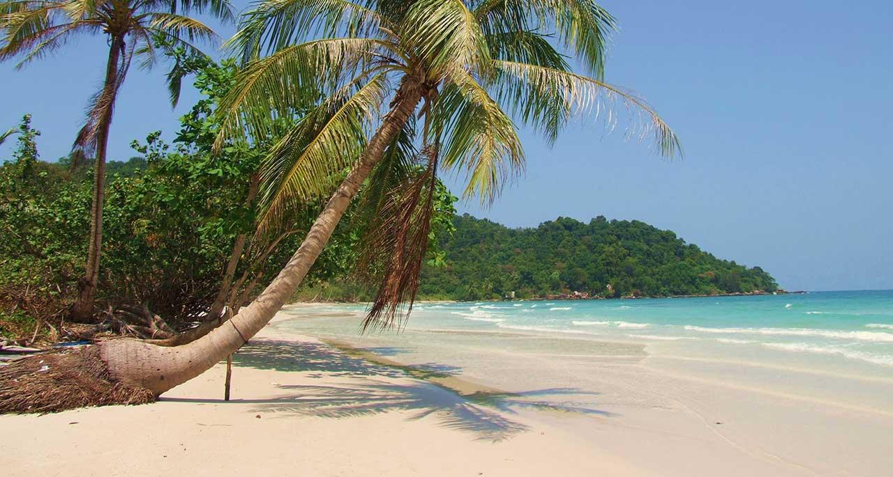 Секс на тропическом острове вк 28 фотография