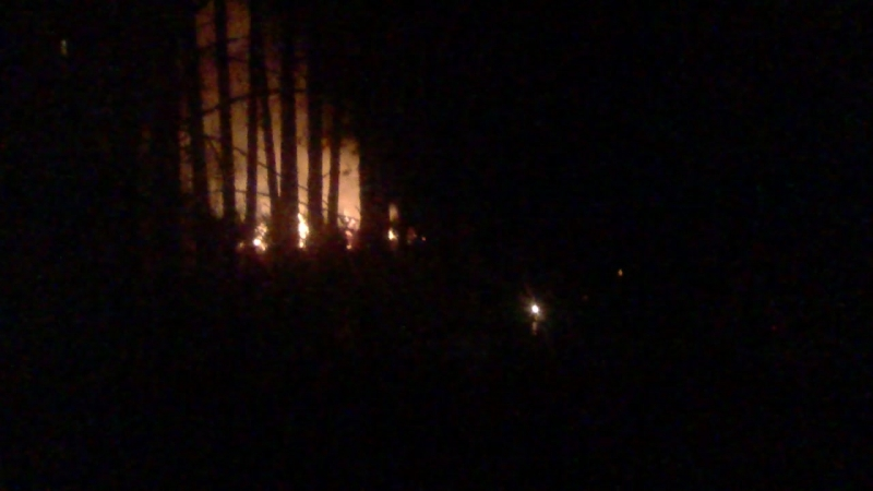 Пожар мусора, кучи листьев Северск