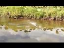 Необычная снасть для рыбалки