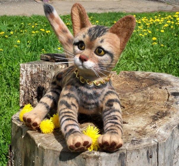 Котёнок Бенгальской породы.Основа связана из ниток мохер, наполнитель шерсть для валяния.В тело малы… (5 фото) - картинка