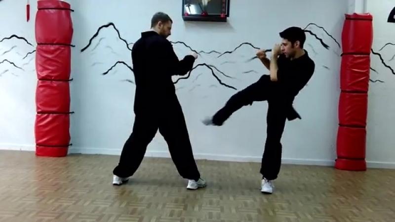 Escuela Luo Fu Shan Choy Lee Fut Kung Fu, Roberto Rodríguez Carrasco. Salamanca