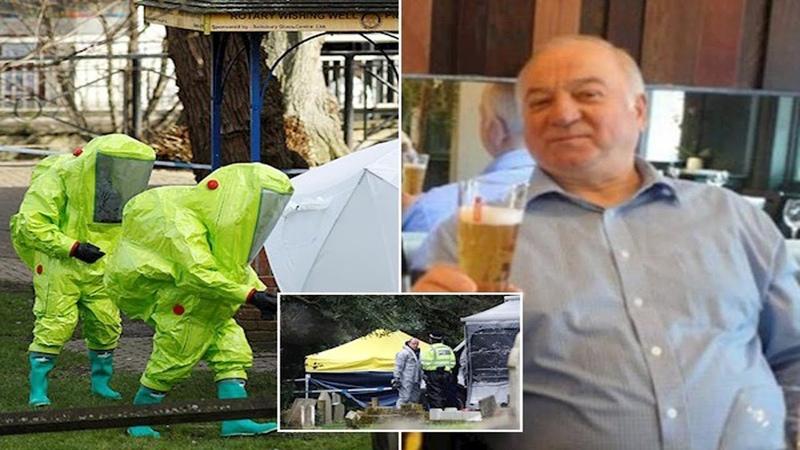 Сотрудник посольства и врач у отравителей Скрипалей появились сообщники