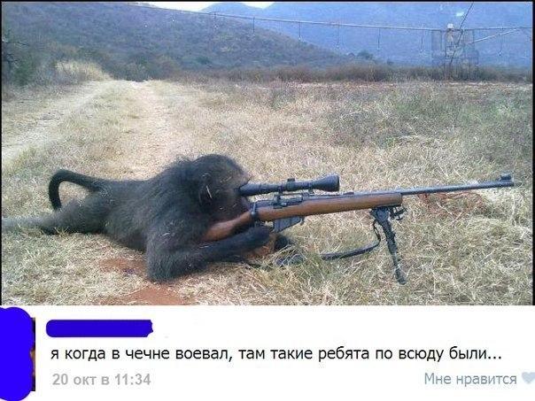 Чечен приколы картинки