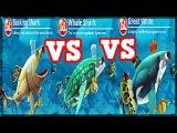 Hungry Shark World Basking Shark VS Whale Shark VS GREAT White Shark XXL SHARKS