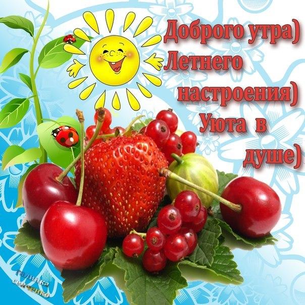 http://cs407525.vk.me/v407525150/b76d/aammV4jzA1c.jpg