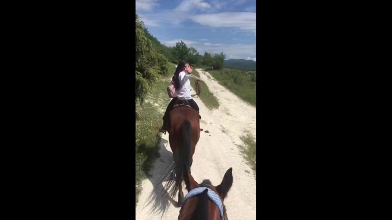 катание на лошадях 👍