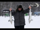 Vip Зимняя ловля форели Ловля форели на платнике Рыбалка в Москве