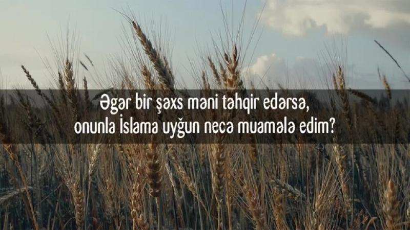 Əgər bir şəxs məni təhqir edərsə, onunla İslama uyğun necə muamələ edim?