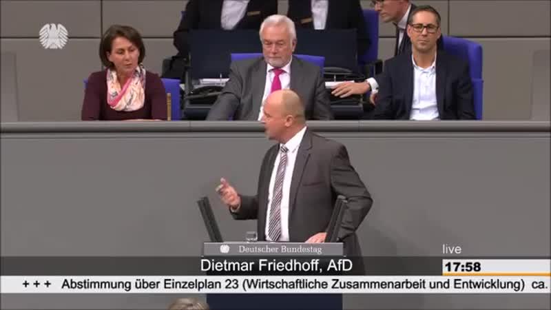 Dietmar Friedhoff AFD- Man schätzt uns im Ausland für das was Sie gerne aufgeben würden-