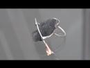 19.09.18 «Телекон»: Ювелирное искусство в Нижнем Тагиле