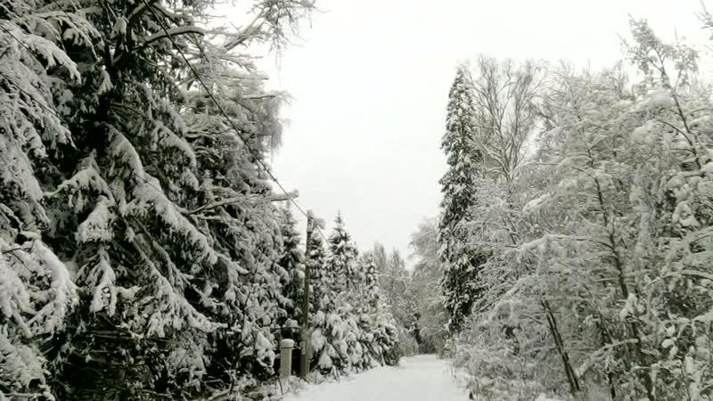 День зимнего солнцестояния в Абрамцево. 22.12.18