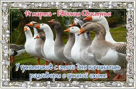 https://pp.vk.me/c7003/v7003565/19a25/P66YnYha3m8.jpg