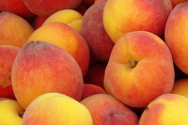 Когда-то персики были известны как персидские яблоки.