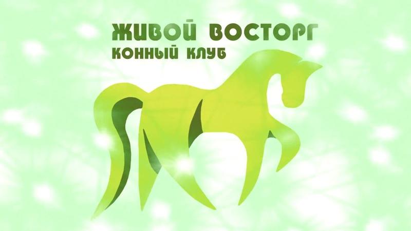 Конный клуб Живой Восторг (Полоцк)