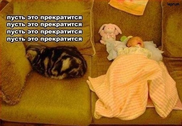 http://cs14102.vk.me/c7004/v7004557/6aee/Mmj0FvtCuXw.jpg