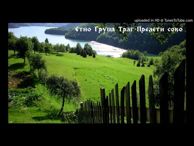 Etno Grupa Trag - Prelete Soko (HQ) 320kbs » Freewka.com - Смотреть онлайн в хорощем качестве
