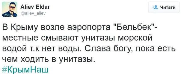Оккупационные власти Крыма хотят закрыть Ялтинский дельфинарий - Цензор.НЕТ 3010
