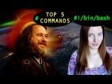 Top 5 Command Line Essentials - BASH Basics