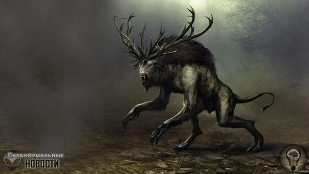 Убийство «Темного ходока» из лесов Пенсильвании