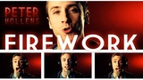 Firework - Katy Perry - Peter Hollens (A Cappella Cover)